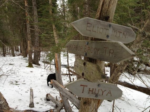 The turnoff to Eliot Mountain